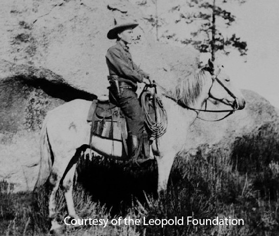 Aldo Leopold as a forest ranger in the Southwest