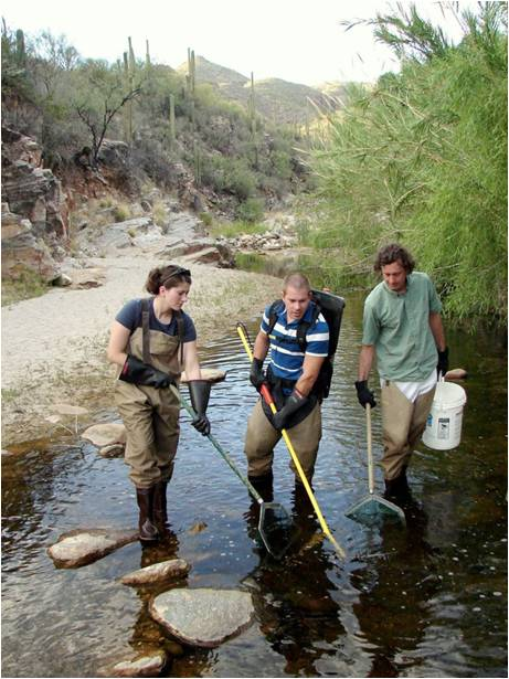 Arizona graduate students and staff electrofish in a small, Arizona desert stream.