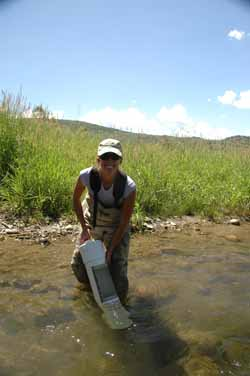 Research Associate, Alissa Gigliotti, deploying rainbow trout sentinel fish cages in the White River, near Meeker, Colorado