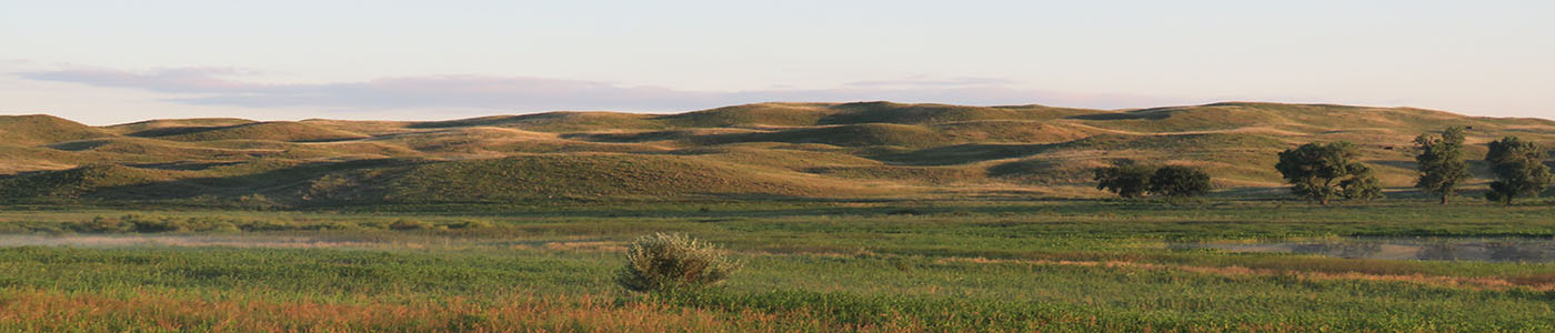 Summer morning view of grass blanketed sand dunes in the horizon with a prairie lands at their base. A marsh at the right bottom corner of the image completes this quintessential view of the Valentine National Wildlife Refuge in Valentine, Nebraska. <br><br>