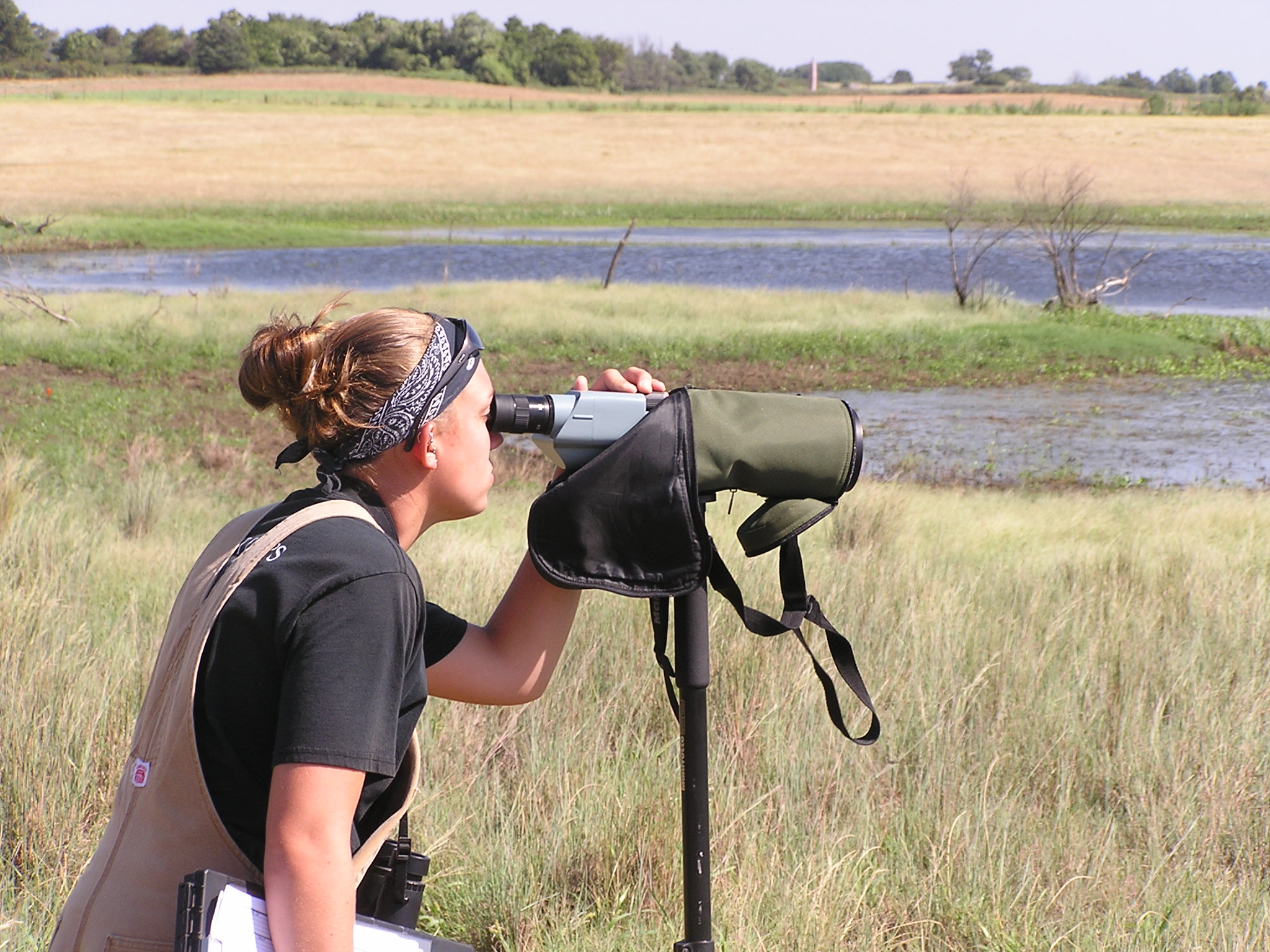Shorebird sampling in the mixed-grass prairie of Oklahoma.