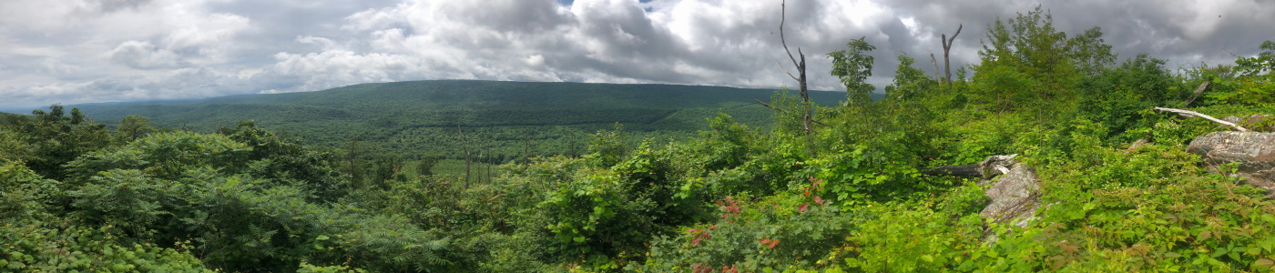 Rothrock State Forest, Pennsylvania
