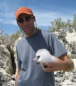 Pat Jodice with a White-tailed Tropicbird chicks in The Bahamas
