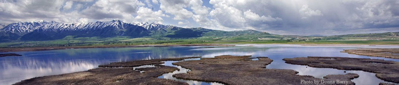 Photo of Cache Valley Wetlands