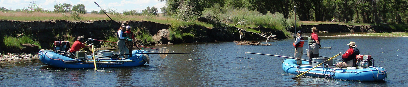 Biologists on rafts survey the fishery in a Wyoming river.